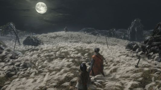 E3 2018:  Ce qu'on sait sur Sekiro:  Shadows Die Twice, la nouvelle production de From Software